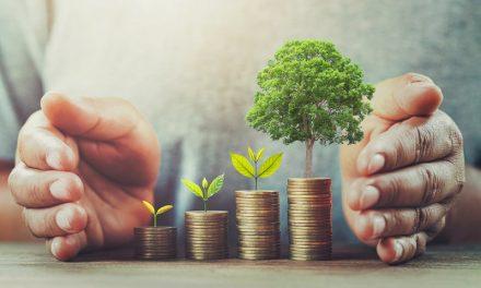 Jak wybrać kredyt dobrze dopasowany do Twojego budżetu domowego?